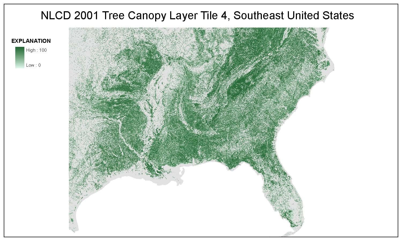 Tree Canopy Layer Tile 4, Southwest United States