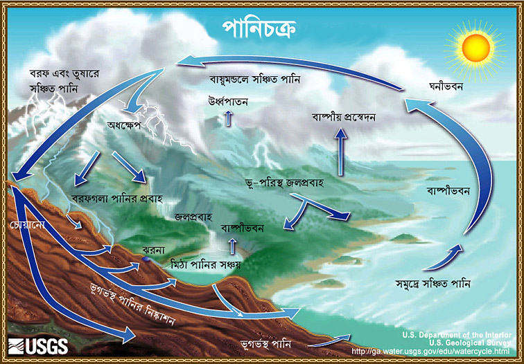 The water cycle bengali usgs water science school the water cycle bengali ccuart Gallery