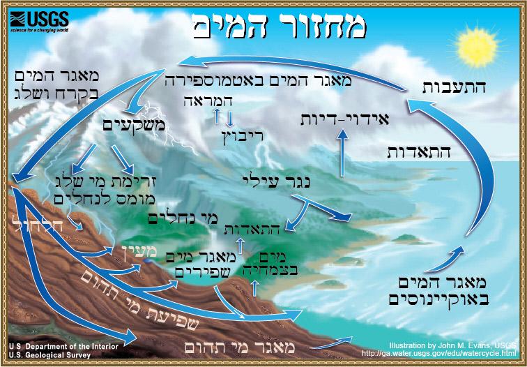 המחזור ההידרולוגי - The Water Cycle, Hebrew, from USGS Water ...
