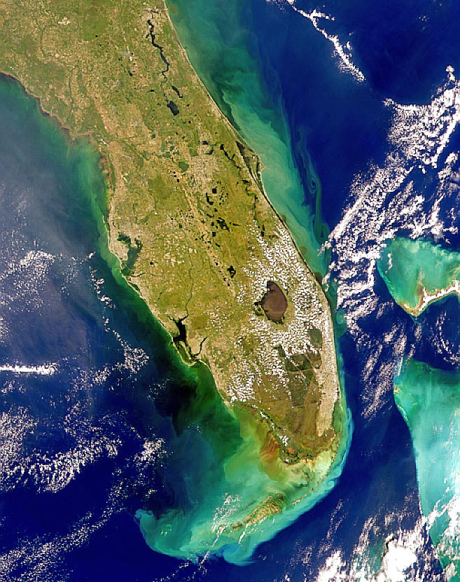 Florida, Oct. 14, 1999. When Hurricane Irene passed over Florida in 1999, the heavy rainfall over land caused extensive amounts of runoff that first entered Florida's rivers which then dumped the runoff water, containing lots of sediment, into the Atlantic Ocean.  Credit:NASA