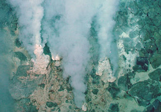 The Mariana Arc is part of the 'Ring of Fire' in the western Pacific Ocean where tectonic plates are moving relatively quickly. Hydrothermal vents, such as these, are present, and they release large amounts of carbon dioxide and minerals. (Credit: NOAA)