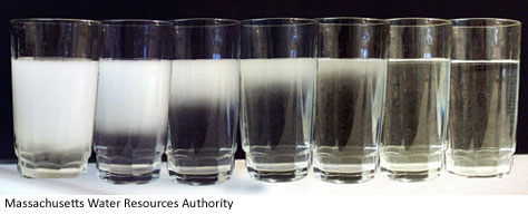 Gles Of Tap Water Going From Cloudy Due To Air Bubbles Clear