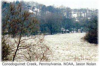 Picture Of Conodoguinet Creek Pennsylvania Showing Springtime Iceflows In The River