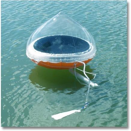 does salt water boil