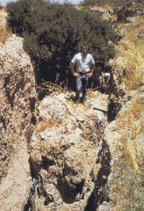 [Photo:  Subsidence-related earth fissures in south-central Arizona]